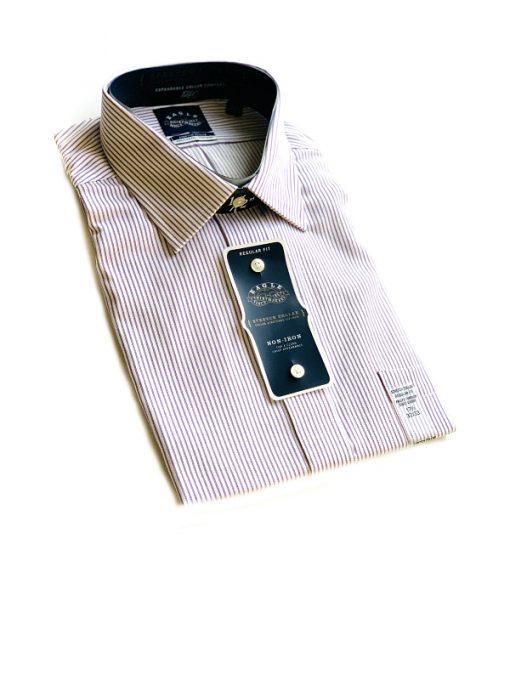 Eagle | חולצה מכופתרת פסים איגל
